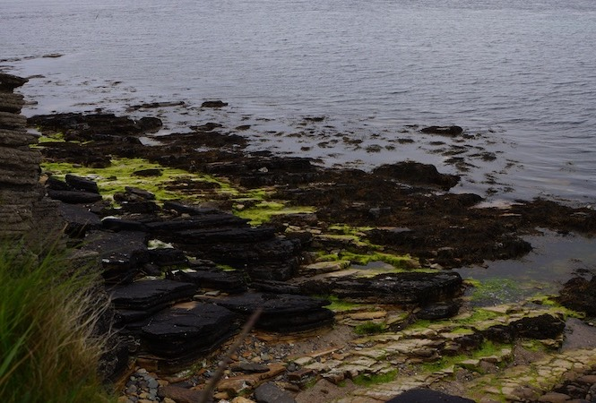 061913 7 Bay next to Broch of Gurness over 2000 years old