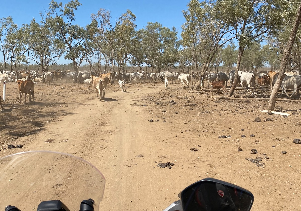 200911 Day 3 Daly Waters to Borroloola 2